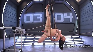 Tied up babe anal machine fucked