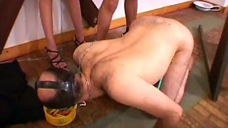 Crucified brunette watches the way submissive dude licks feet of mistress